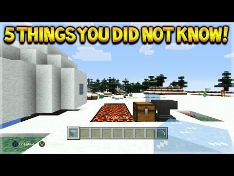 Minecraft Console Edition – 5 Things You Possibly Didn't Know About Title Update 43