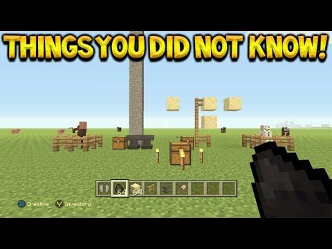 Cool Things You Possibly Didn't Know You Could Do In Minecraft Console Edition