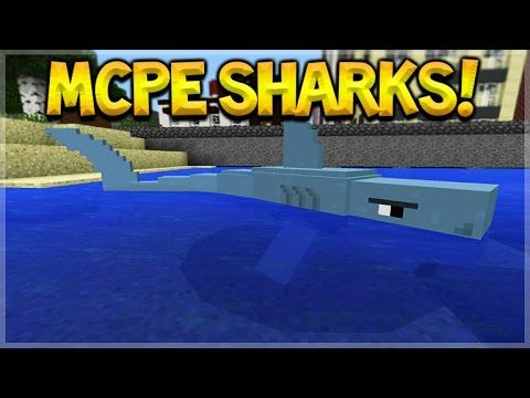 SHARKS IN MCPE!! Minecraft Pocket Edition: Amazing New Sharks & Megalodon Addon (Pocket Edition)