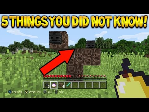 Minecraft Console Edition – 5 Cool Things You Didn't Know About Minecraft Console
