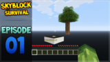 Minecraft Xbox – Skyblock Survival Map