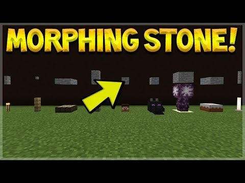 MCPE MORPHING STONE!! Minecraft Pocket Edition Morphing Stone GLITCH Command (Pocket Edition)