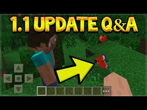 Minecraft Pocket Edition – UPDATE 1.1 Q&A The Combat Update & NEW Parrots (Pocket Edition)
