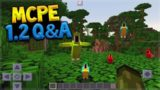 Minecraft Pocket Edition – 1.2 Q&A New Dimensions + Parrots (Pocket Edition)