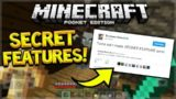 SUPER SECRET FEATURE COMING! Minecraft Pocket Edition – SECRET FEATURES Dev TEASER! (Pocket Edition)