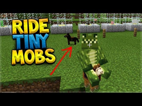 HOW TO RIDE TINY MOBS IN MINECRAFT POCKET EDITION!