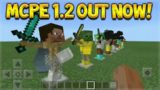MCPE 1.2 OUT NOW –  ALL New Features Review! (Better Together Update)