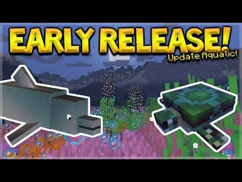 UPDATE AQUATIC RELEASING EARLIER! – 1.13 UPDATE CANCELLED! (Update News)