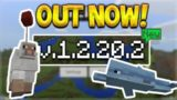 NEW BETA RELEASED! Minecraft Pocket Edition 1.2.20.2 – NEW Dolphins & Removed Enchantments!
