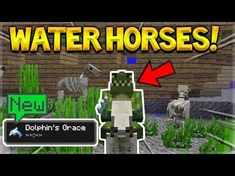 NEW DOLPHIN'S POTIONS!! UnderWater Horses – Minecraft 1.13 Snapshot 18w19a