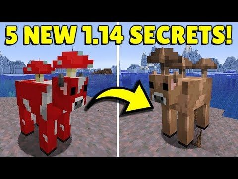5 NEW SECRET FEATURES THAT YOU DID NOT KNOW ABOUT MINECRAFT 1.14