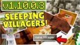 MCPE 1.10 BETA They Added SLEEPING VILLAGERS!