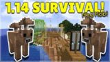 MINECRAFT 1.14 – SHIPWRECK SURVIVAL ISLAND – NEW BROWN MOOSHROOM MOB! (Dinnerbone Seed)