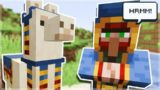 They Added A New VILLAGER & LLAMA To Minecraft!!!!!