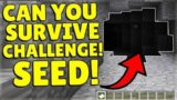 How Long Can YOU Survive In This Underground Railroad Spawn Seed! (Challenge Seed!)
